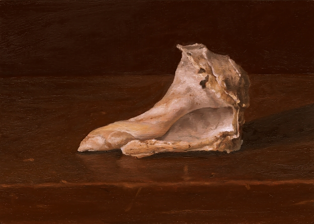 Shell - Original Still Life Painting by Paul Keysar